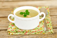 Zucchini Cream Soup with Bortolini Beans. Zucchini Cream Soup with Beans royalty free stock images