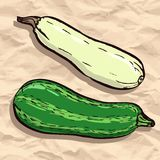 Zucchini on crumpled paper Stock Images