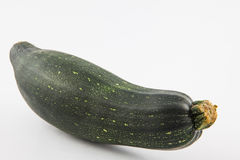 Zucchini Cucurbita pepo. Isolated in white background Royalty Free Stock Photography
