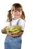 Zucchini da terra arrendada da menina Fotografia de Stock