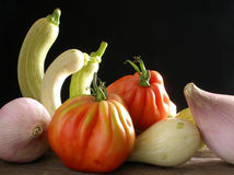 Zucchini da trombeta com tomate da carne e as cebolas doces Imagem de Stock