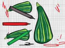 Zucchini drawn on a sheet of paper Stock Photo