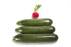Zucchini drei und ein Rettich Lizenzfreie Stockfotografie