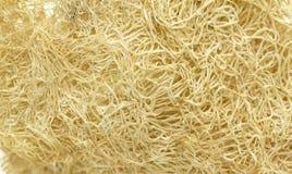Zucchini fiber Stock Photo