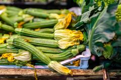 Zucchini flower blossoms in a crate at an Italian farmers market royalty free stock photo