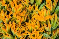 Zucchini Flowers Stock Image