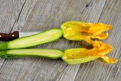 Zucchini flowers Royalty Free Stock Photo