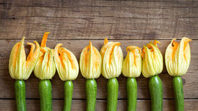 Zucchini with flowers Stock Images