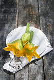 Zucchini Flowers Stock Images