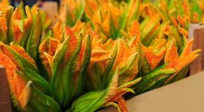 Zucchini flowers for sale at a Rialto market in Venice, Italy. Zucchini,  flowers, sale, Rialto, market, Venice, Italy Royalty Free Stock Photos
