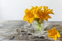 Zucchini flowers on water glass on rustic table Stock Photos