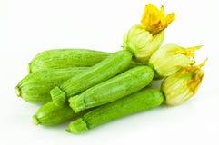 Zucchini fresco Fotografia Stock Libera da Diritti
