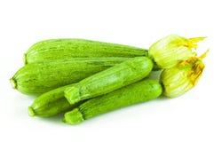 Zucchini fresco con il fiore Fotografie Stock