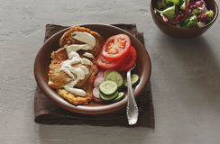 Zucchini fritters with salad. In brown ceramic plate on a light surface. Vegetarian food Stock Images