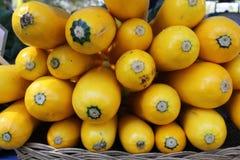 Zucchini giallo. Immagini Stock Libere da Diritti