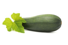 Zucchini with Green Leaf Stock Images