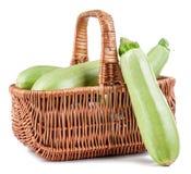 Zucchini isolado Foto de Stock Royalty Free