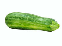 Zucchini Isolated Royalty Free Stock Photography