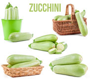 Zucchini isolated. On white background royalty free stock images
