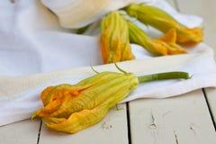 Zucchini kwiaty Zdjęcia Royalty Free