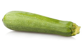 Zucchini marrow Royalty Free Stock Image