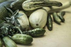 Zucchini med gurkor på tabellen Arkivfoto