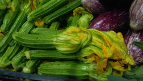 Zucchini mit Blüten Lizenzfreie Stockbilder