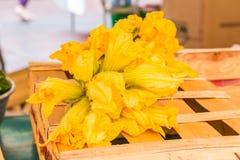 Zucchini- oder Zucchiniblumen am Markt Stockfoto