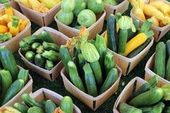 Zucchini Royalty Free Stock Photos