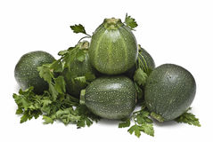 Zucchini and parsley. Royalty Free Stock Image