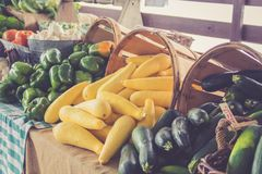 Zucchini and peppers for sale in baskets at the farmer`s market for fall harvest royalty free stock photo