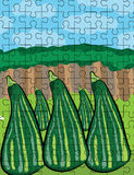 Zucchini puzzle illustration Royalty Free Stock Photos