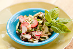 Zucchini and Radish salad with basil Royalty Free Stock Photo