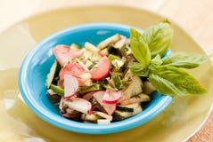 Zucchini and Radish salad with basil Royalty Free Stock Photo