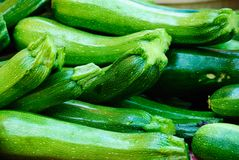 Zucchini. For Sale at the Farmers Market Stock Image