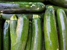 Zucchini for sale at Farmers Market Stock Image