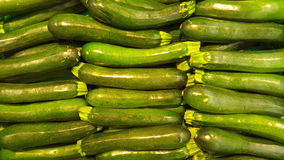 Zucchini for sale in a fruit and vegetable shop Royalty Free Stock Image