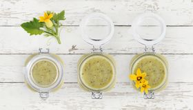 Zucchini sauce jar and flowers food top view isolated on white w royalty free stock photography