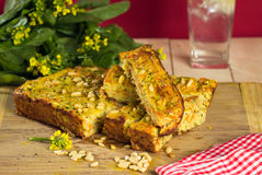 Zucchini slice Royalty Free Stock Images