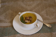 Zucchini soup with bacon and greenery Royalty Free Stock Photography
