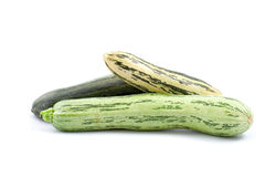 Zucchini squash Royalty Free Stock Photo
