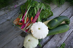 Zucchini, squash, carrots, chard Royalty Free Stock Images