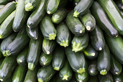 Zucchini squash on display at the farmer's market. Ready for sale Royalty Free Stock Photo