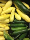 Zucchini and Squash Stock Photography