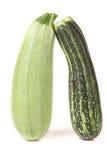 Zucchini and squash isolated on white background Stock Image