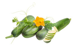 Zucchini and stalk with leaves, tendrils and flower. One partly sliced and three whole fresh zucchini and stalk with leaves, tendrils and flower on a light Stock Images