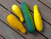 Zucchini and Summer Squash Royalty Free Stock Images