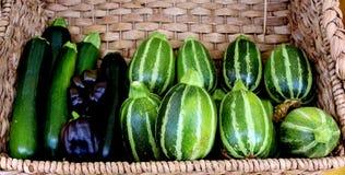 Zucchini, svarta spanska peppar och sommarsquash fotografering för bildbyråer