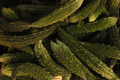 Zucchini texture. Strange zucchini textures from a sicilian market Royalty Free Stock Images