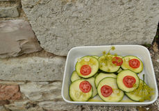 Zucchini with tomatoes and fennel sprigs Stock Photos